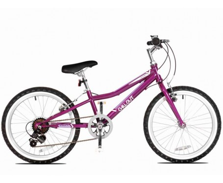 "20"" Chillout 20"" Wheel Girls Bicycle for 5 to 8 years old"