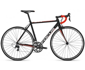 Focus Cayo AL 105 2017 Road Bike
