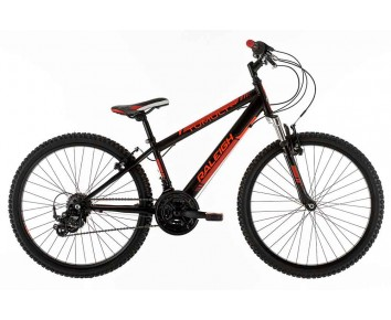 "24 Raleigh Tumult 13"" frame for ages 8-12 Boys"
