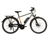Raleigh Array Cross Bar Gray Electric Bike 2020