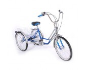 Mission Musketeer 14 Quot Tricycle Suitable Special Needs