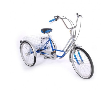 "Mission Trilogy 20"" special needs tricycle"