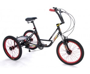 "Mission MX 20 trike 20"" wheel special needs trike"
